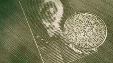 Photo of Cerchi nel grano, nuove Rivelazioni
