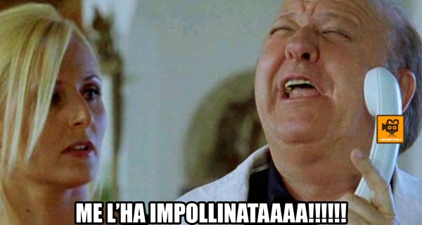 Photo of Meme e Gif : I più Gettonati sono Boldi e i Cinepanettoni