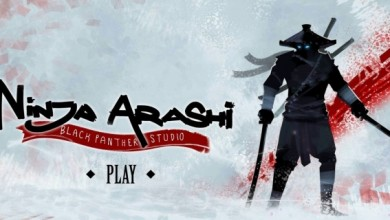 Photo of Ninja Arashi, finalmente l'upgrade