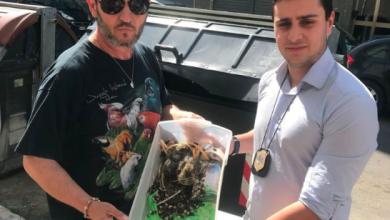 Photo of Enzo Salvi salva cuccioli di piccione abbandonati tra i rifiuti