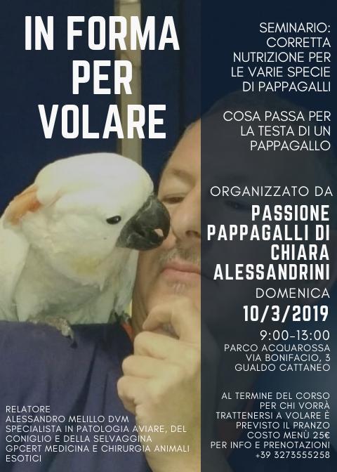 """Photo of In Forma per volare : al via il Seminario per la corretta alimentazioni dei """"Volatili"""""""