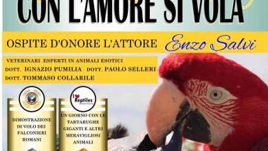 """Photo of Successo per il papparaduno """"Con l'Amore si vola"""" . Centinaia i partecipanti"""