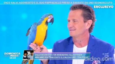 """Photo of Enzo Salvi da Barbara D'Urso : Temevo  che il mio """"Fly"""" morisse ( Video )"""